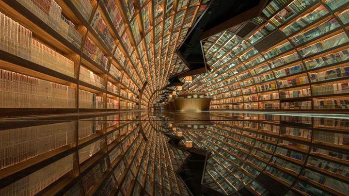 Curiosità Nel Mondo Dei Libri Le Frasi Piu Belle Dei Libri